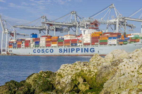Covid e non solo nelle prospettive del commercio internazionale del dopo pandemia