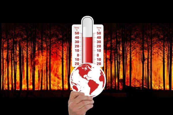 2020 e cambiamento climatico: pochi i progressi compiuti dai governi mondiali
