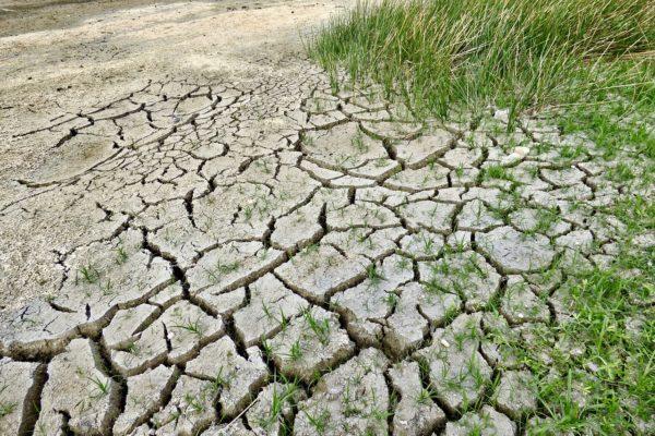 Messico e Brasile, il cambiamento climatico entra nelle decisioni di politica monetaria