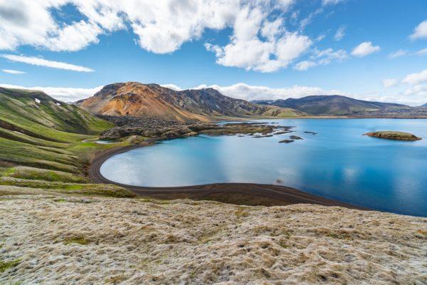 Global Peace Index. Tra la pacifica Islanda e le tensioni alimentate dalla pandemia