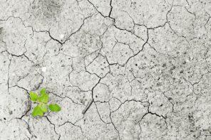 Cambiamenti climatici, è l'ora degli investimenti privati